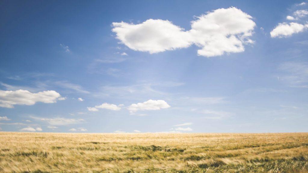 オーガニックコットンは地球環境に良い