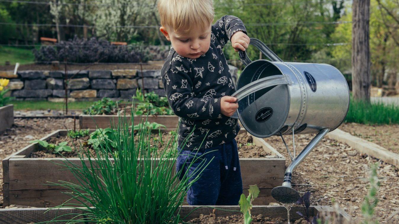 簡単!土にいれるだけ!炭をガーデニングに利用する効果って!?